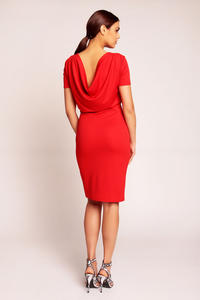 Red Shift Seam Dress with Cowl Neck Back