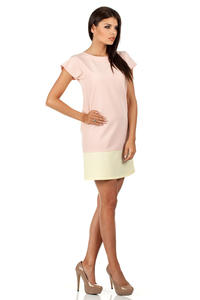 Pink Lovely Straight Cut Lovely Dress