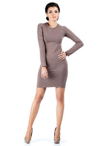 Brown Seam Shift Dress with Raglan Sleeves