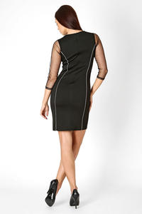 Black Fitted Mini Dress with Transparent Sleeves